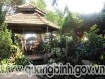cafe Họa Mi